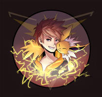 Pokemon Go: Team Instinct by Candevil
