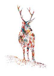 Deer by memougler