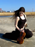 Harlequin Violin 3 by Kechake-stock
