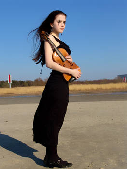 Harlequin Violin 39