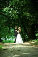 Wedding 5 by Kechake-stock