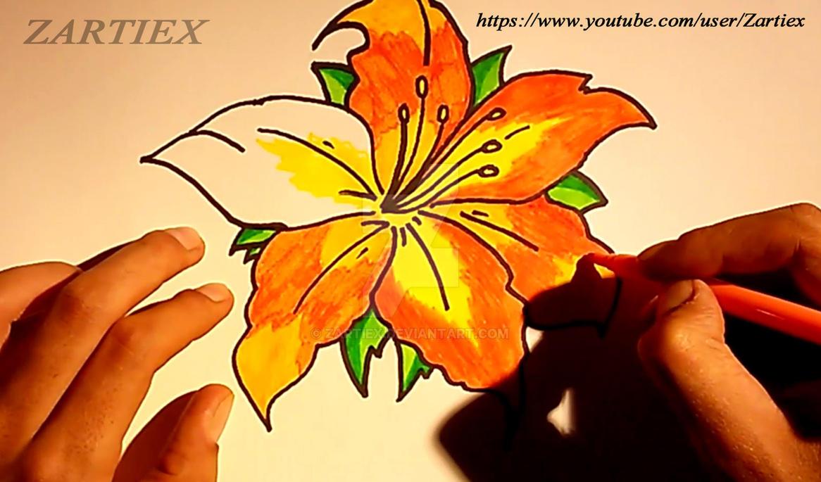 Rosas Rojas Dibujos De Flores Imagenes De Flores Y By Zartiex On
