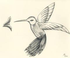 Hummingbird For K 05