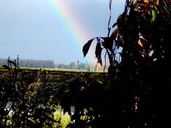 Rainbow by blue-diamant