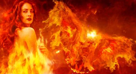 Revival of The Phoenix