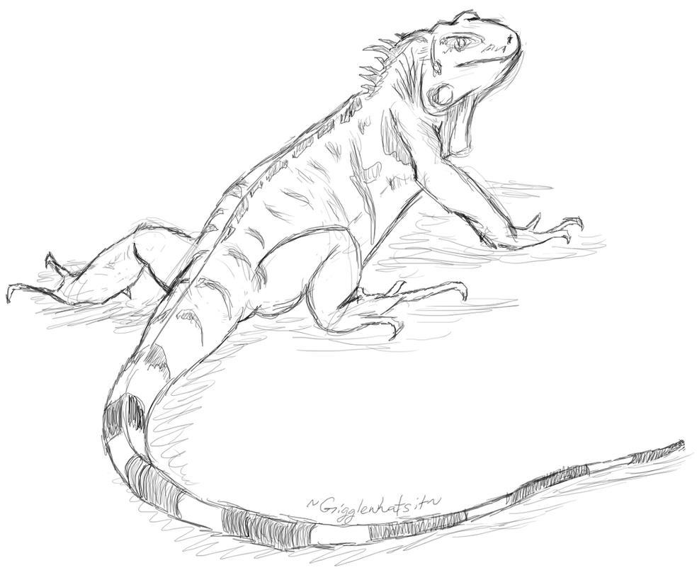 Uncategorized Lizard Drawings lizard sketch1 by gigglewhatsit on deviantart gigglewhatsit