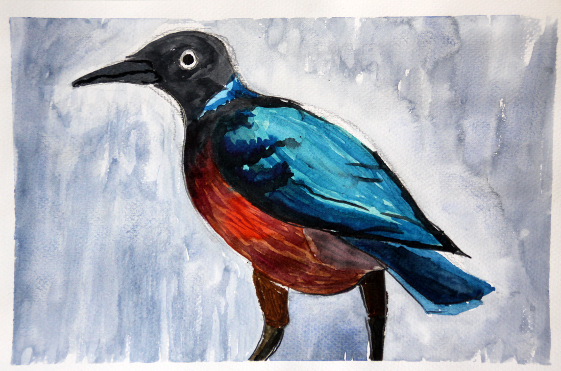 Colorful Bird Watercolor by Aster1os