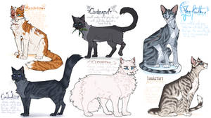 random warrior cats designs #2