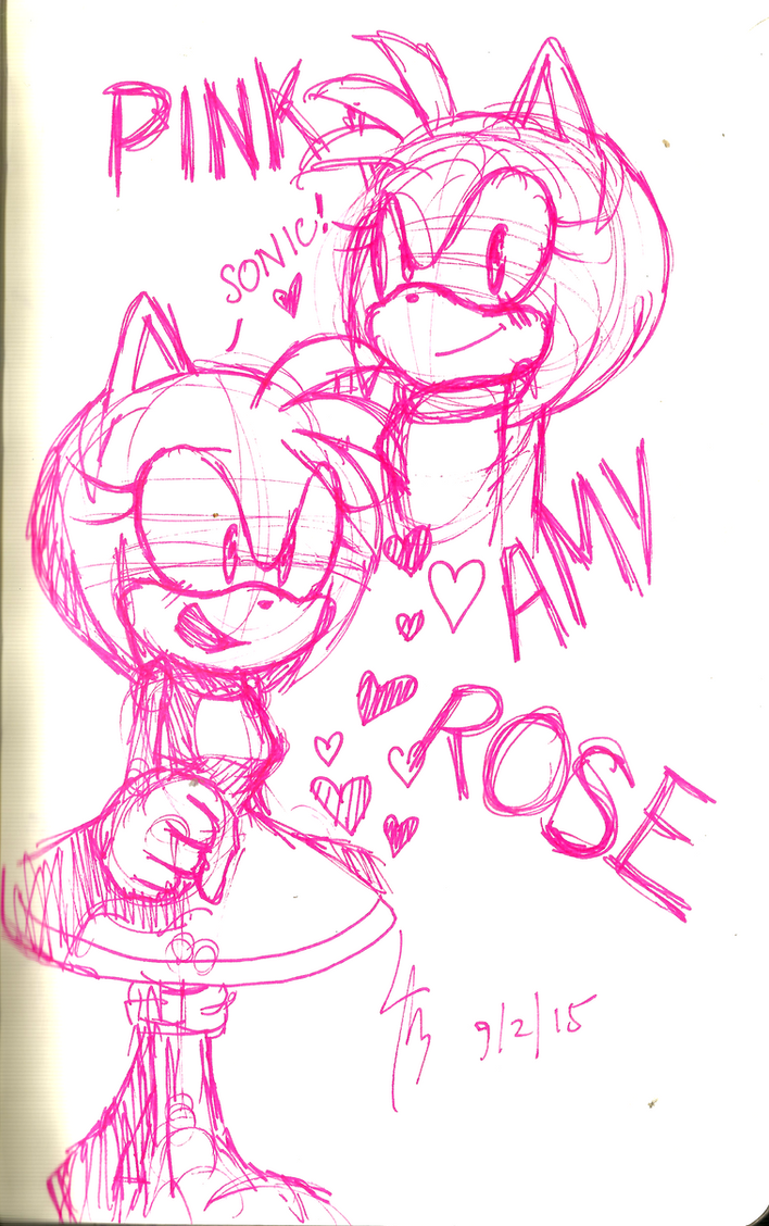 .:COLOR CODING:. Pink: Amy Rose by RianRen
