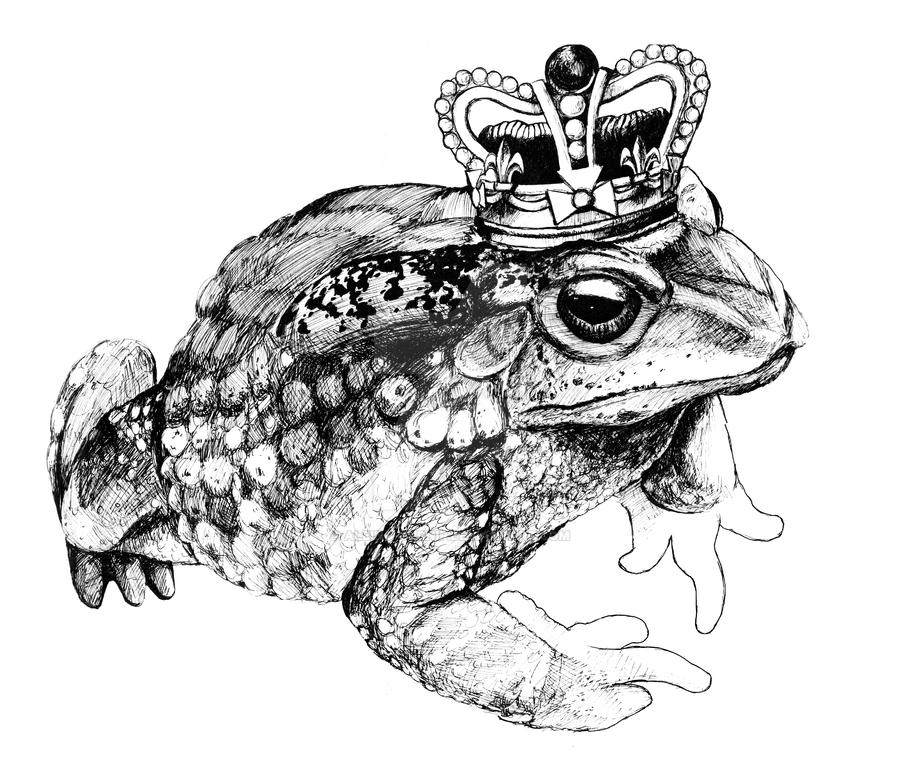 Toad King by Albino-Turnip