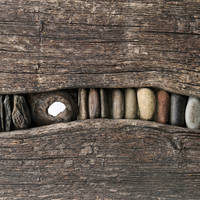 Dragon's teeth by Erdbeersternchen