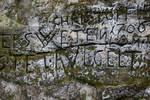 Insignia by Erdbeerstern