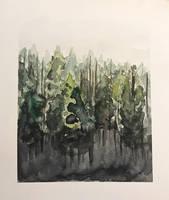 Through the woods by Erdbeersternchen