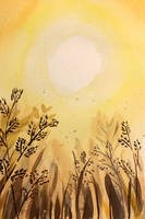Sonnensommersehnsucht by Erdbeersternchen