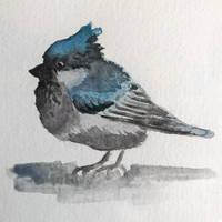 Blue bird in my heart.
