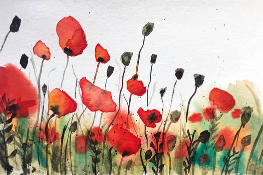 Where the poppies pop
