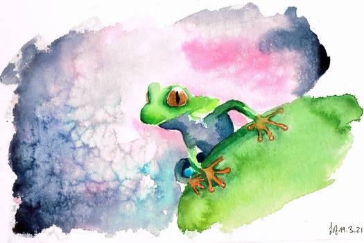 A frogs dreams