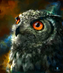 20150904 Owl Psdelux by psdeluxe