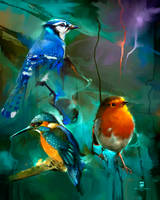 20150904 Birds Psdelux by psdeluxe