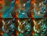 20150904 Tiger Process Psdelux