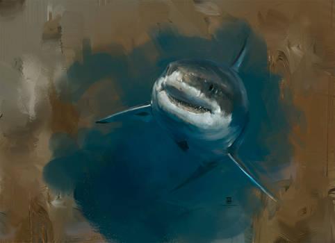 20151125 Shark Psdelux