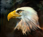 20151205 Eagle Psdelux