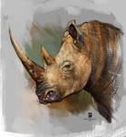 20151210 Rhino Psdelux