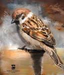 20160817 Sparrow Psdelux