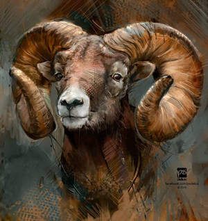 20160920 ram psdelux --SOLD--