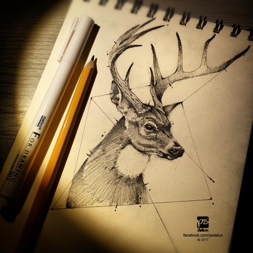 20170213 Deer Sketch Psdelux by psdeluxe