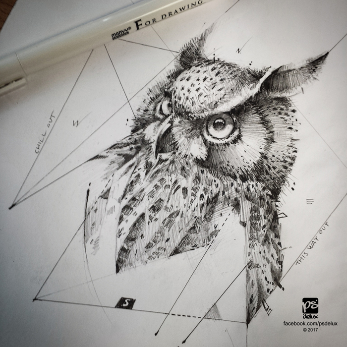 20170217 Owl Sketch Psdelux by psdeluxe
