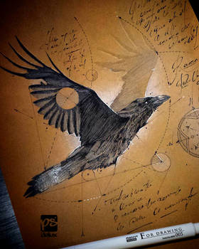 20170311 Raven Psdelux