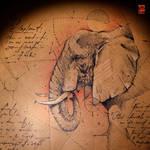 20170327 Elephant Psdelux