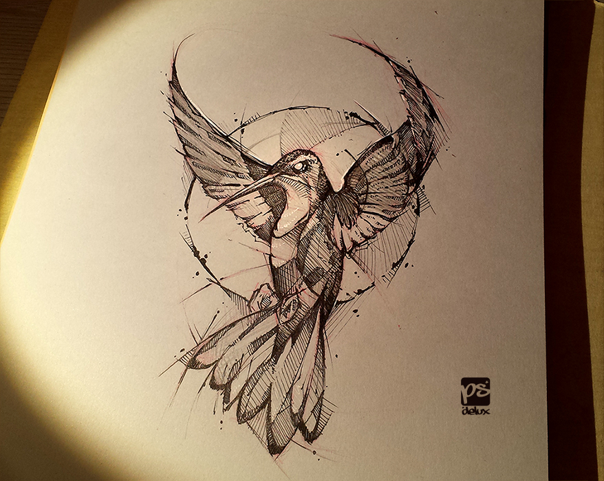hummingbird sketch DA psdelux by psdeluxe