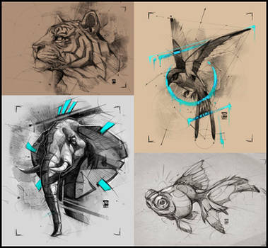 Animal Sketches Psdelux