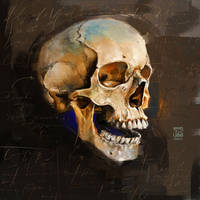 Skull Psdelux by psdeluxe