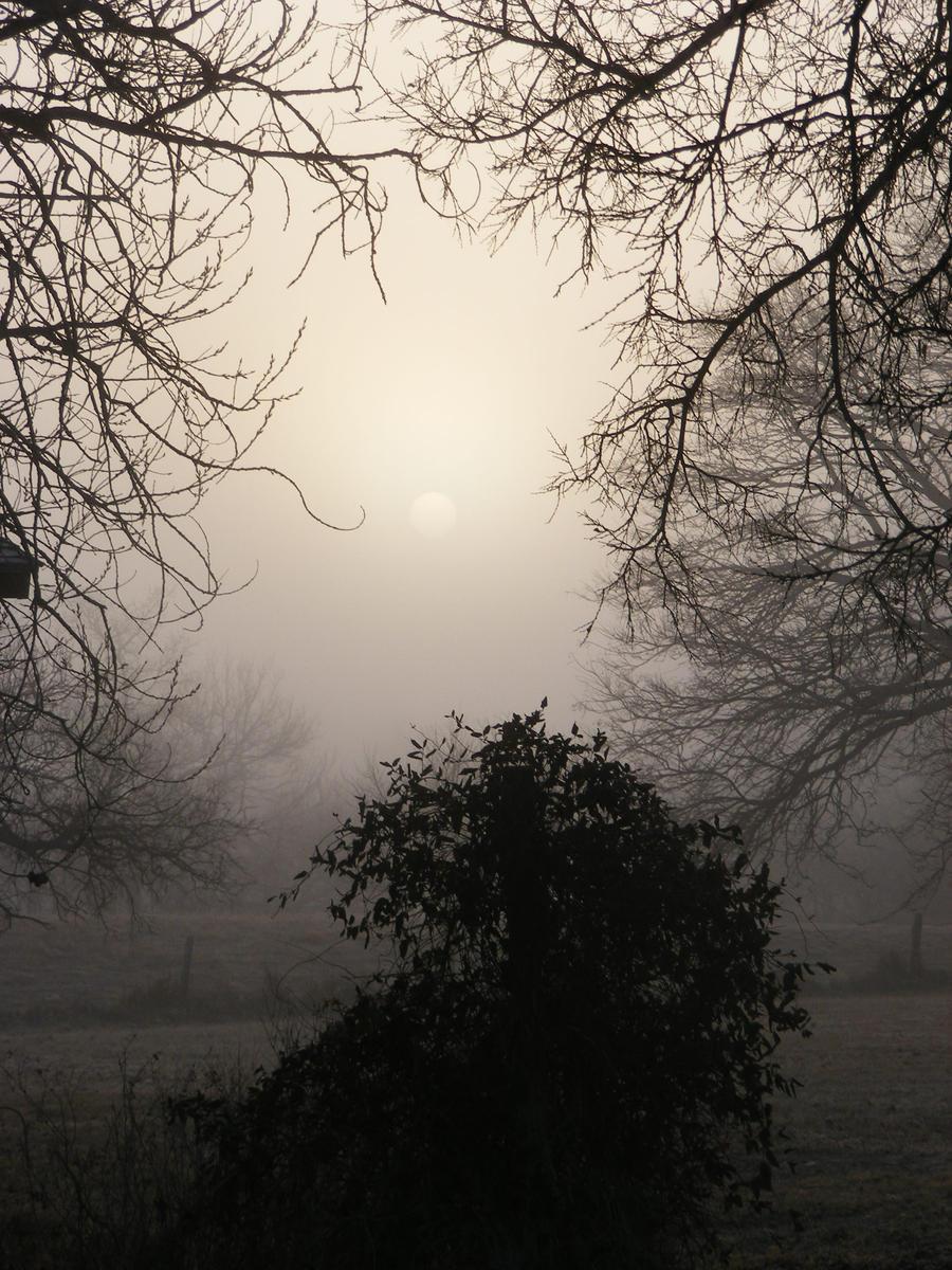 Sunrise through the fog4 by grlgeorge