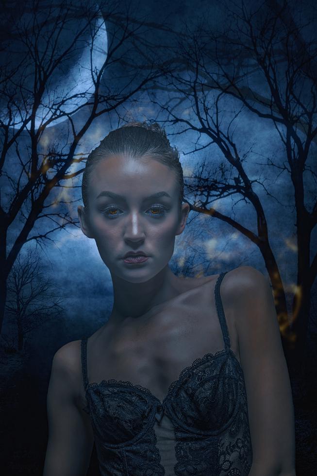 .....In the moonlight....... by jopageri62