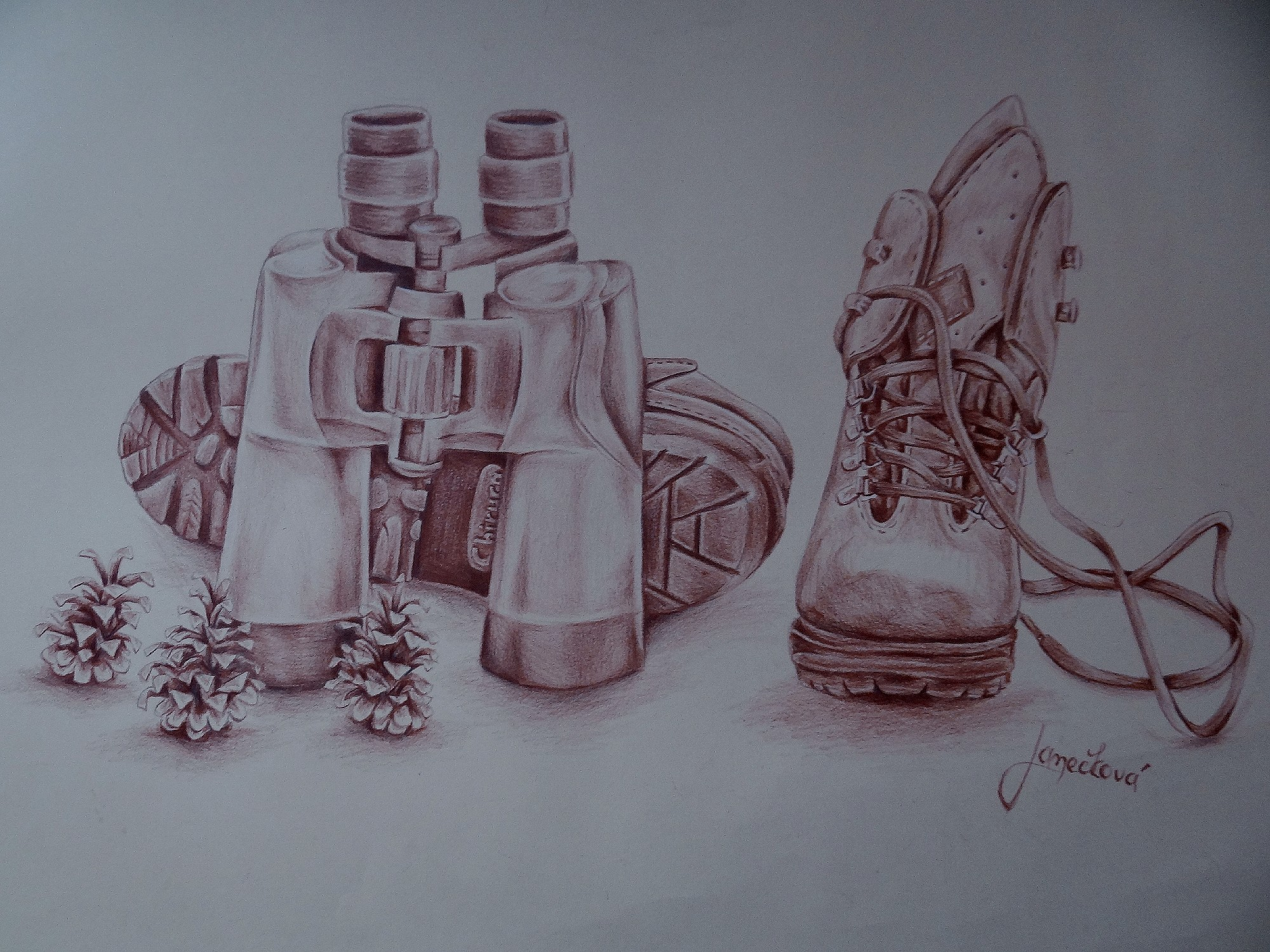 Binoculars, boots and tree cones (school work) by Penetraliaa