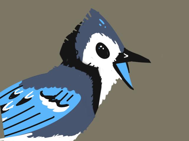 Bluejay Screenprint by FoxTone