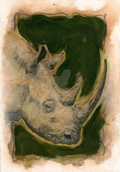 Rhino by paddavis