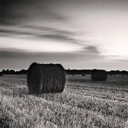 Haystack by igorsev