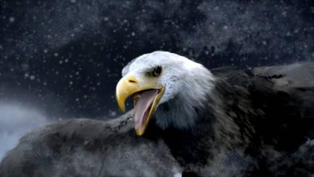 Eagle V2