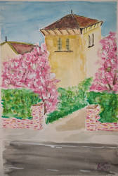 Neighbours house in blossom (unfinished)