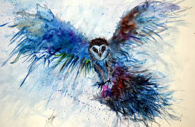 'watercolour owl' by tarik-sahin