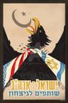 USA Israel Poster