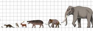 Size Chart: Pleistocene Fauna of Crete