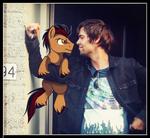 Ponysona