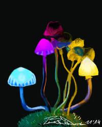 Bright shiny mushrooms