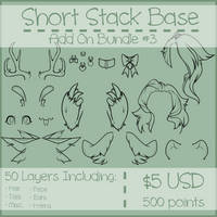 Short Stack Add On Bundle #3